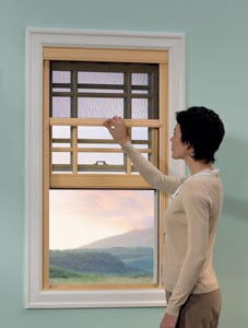 Phantom Screens is selected by JELD-WEN to integrate the Serene window screen into its custom wood window designs.