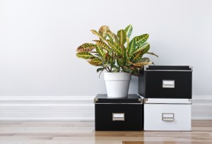 5 Great Storage Ideas For Your Home